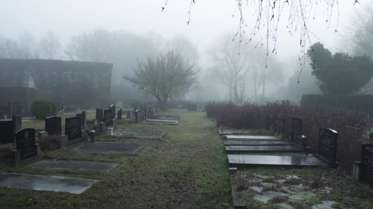 Grave - 67042